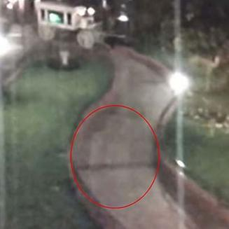 Disneyland ghost caught on camera